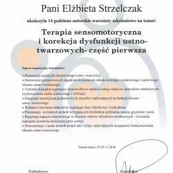 zaswiadczenieterapia-sensomotoryczna